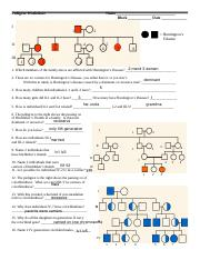 Anthony Pedigree Practice Problems Worksheet - Pedigree ...