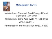 Lecture 12 Metabolism Chemical Bond Energy and Glycolysis