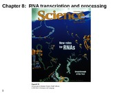 Bio 322 Chapter 8 and 9 RNA Transcription Slides