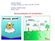 Lecture 13 Bioremediation 2015.ppt