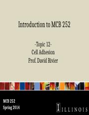 DR MCB 252 Topic 12 Cell Adhesion Sp2014