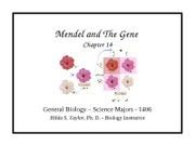 Ch. 14 - Mendel and The Gene Idea