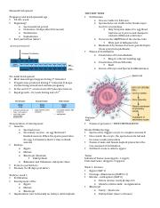 Study Guide - Lecture 1.3 (incomplete).docx