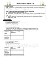 macromolecule virtual lab wksheet