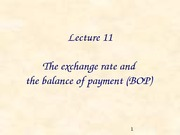Lecture 11. Exchange rates and Balance of payment (1)