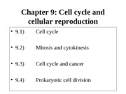 Cell%20cycle%20F%2012%20%28chap2.%209%29