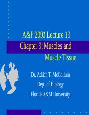 A&P2093Lecture11 (1).ppt