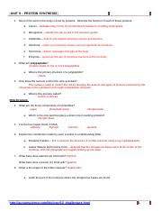 DNA Worksheet Key - Worksheet on DNA 1 What does DNA stand ...