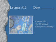 Lecture 12, Ch. 28