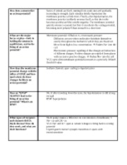 Cogs 1 review sheet