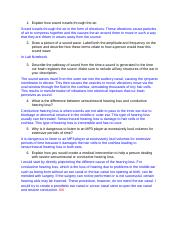 Copy of 1.3.1 Conclusion Questions.docx