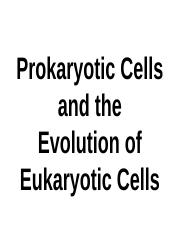 2+Prokaryotic+Cells+and+the+Evolution+of+Eukaryotic+Cells+upload.pptx