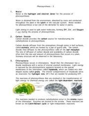 Photosynthesis160-page3