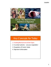 3 Chapter 51 Nutrition and Digestion