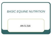 EQUINE%20NUTRITION