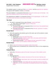 Character Education Worksheet Excel Axial Skeleton Si Worksheet  Skeleton Theskull  Free Maths Worksheets Ks3 with Square Root Worksheets Pdf Excel  Pages Copy Of Kin   Axial Skeleton Answer Key Letter N Worksheets Kindergarten Pdf