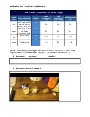 Anatomy-potato lab eScienceDiffusion&OsmosisExp.docx