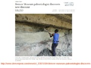 Sedimentary Environs and Review