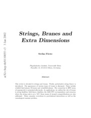 Strings Branes and Superstring Theory  - S. Forste