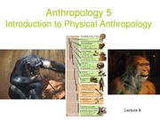 Lecture 8 social evolution