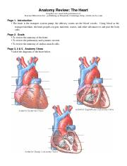 Heart+Review++Study+Questions