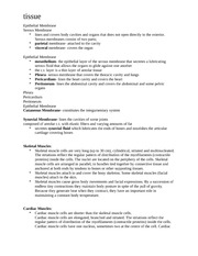 Epithelial Membrane