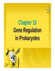 Regulation of gene expression-prokaryotes