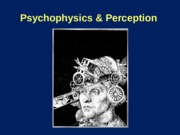 Psychophysics_Perception Lecture