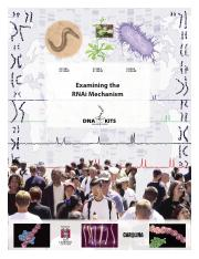 4-Examining the RNAi mechanism.pdf