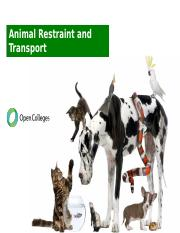 Animal Restraint and Transport.pptx