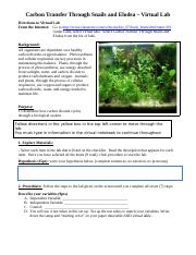 13-14 Virtual Lab-Carbon Transfer Snails and Elodea.docx
