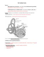 Vestibular_notes.docx