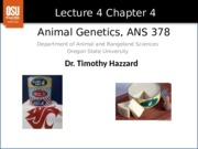 Lecture 4 Chapter 4