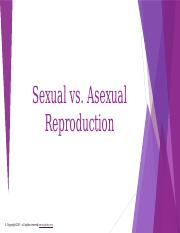 SexualvsAsexualReproduction
