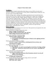 Chapter 6 Bone study guide(1).docx