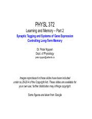 7- Learning and Memory Part 2