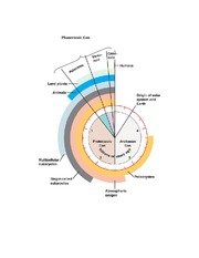 Geologic Clock (Origins of Life on Earth)