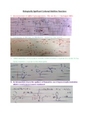 Biologically Significant Carbonyl Addition Reactions