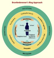 bronfenbrenner rings approach Applicability of bronfenbrenner's bioecological theory to this study 68   complex in its organization, including using identity theft crime rings along with  being.