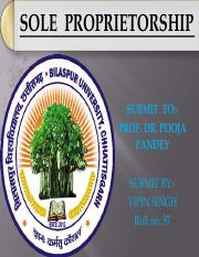 sole proprietorship.pdf