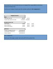 WK 4 AUO_MS6010_Compnet_Budget_Template Dorothy Bradley.xls