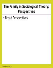 chapter1theories(2).ppt