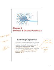 08 Synapses and graded potentials slides - Copy.pdf
