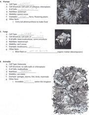 Plantae, Fungi, Animalia homework part one