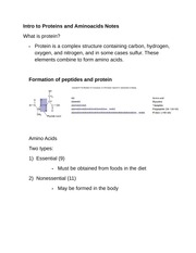 Intro to Proteins and Aminoacids Notes