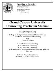 Typhon- Practicum Manual Master's in Counseling.pdf
