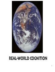 Real World Cognition.pdf