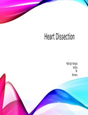 Heart Dissection.odp