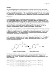 Biochem Enzyme Lab Report