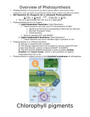 Unit 3 ~ Photosynthesis, Cell Communication, + Cell Division.docx
